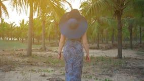 La chica joven en sombrero y vidrios azules va contra el fondo de las palmas de coco tropicales Tiro medio Cámara lenta almacen de metraje de vídeo