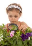 La chica joven está mirando a través de una lupa Fotografía de archivo