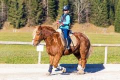 La chica joven está montando con el caballo Foto de archivo libre de regalías