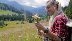La chica joven hermosa recoge las flores salvajes en las montañas metrajes