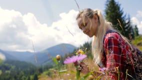 La chica joven hermosa recoge las flores salvajes en las montañas almacen de metraje de vídeo