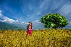 La chica joven juega en un campo en las montañas de Himalaya Imágenes de archivo libres de regalías