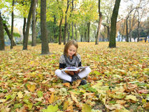 La chica joven lee un libro en el parque del otoño Imagen de archivo