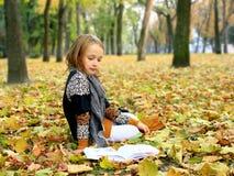La chica joven lee un libro en el parque del otoño Foto de archivo