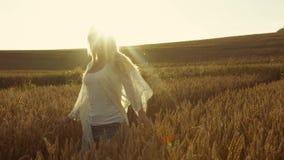 La chica joven linda sonríe en la sol brillante, corre lejos en la cámara lenta, una puesta del sol Tiros del estabilizador Momen almacen de metraje de vídeo