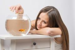 La chica joven puso su cabeza en su mano, las otras alimentaciones de mano los pescados en el acuario imagen de archivo