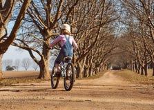 La chica joven que montaba su árbol del camino de tierra de la bici de la bicicleta abajo alineó la avenida Fotografía de archivo libre de regalías