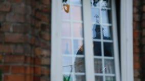 La chiesa ha riflesso in finestra della residenza privata, devozione alla religione, cristiano stock footage