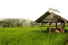 La choza del granjero indonesio foto de archivo