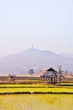 La choza vieja en una granja del arroz. Fotos de archivo