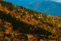 La chute colore la Caroline du Nord 2014 photographie stock libre de droits