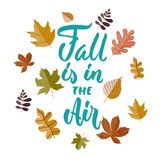 La chute est dans le ciel - expression tirée par la main de lettrage de vacances de saisons d'automne et griffonnages confortable illustration stock