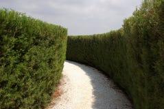 La Chypre, jardin botanique photo libre de droits