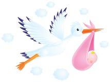 La cicogna bianca trasporta un appena nato ai suoi genitori Fotografia Stock