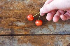 La ciliegia Fotografia Stock Libera da Diritti