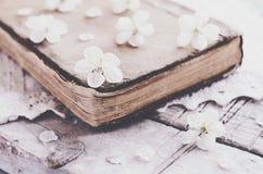 La ciliegia fiorisce la stenditura sopra il libro vecchio sul centrino del pizzo Fotografia Stock
