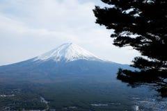 La cima alta vicina di bella montagna di Fuji con la copertura di neve sulla cima con potrebbe e pino nel Giappone immagine stock