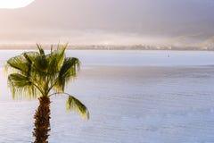 La cima della palma contro il mare blu con una catena montuosa sull'orizzonte Tacchino di mattina di bella vista Fotografia Stock