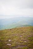La cima di Hoverla Fotografia Stock Libera da Diritti