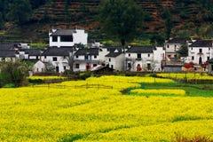 La Cina Fotografie Stock