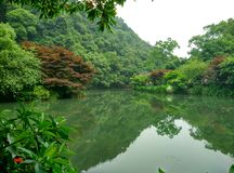 La Cina Hangzhou nove correnti, longjing Immagini Stock
