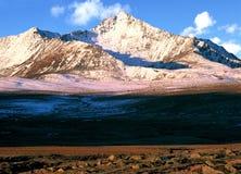 La Cina/Xinjiang: montagna della neve nell'alba Fotografia Stock