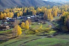 La Cina/Xinjiang: Villaggio di Baihaba di mattina Fotografia Stock