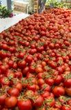 La Ciotat för tomatgatamarknad Arkivbild
