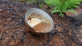 La ciotola abbandonata nella montagna è riempita di acqua immagini stock