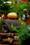 La ciotola delle elemosine del ` s del monaco dell'oro Fotografia Stock Libera da Diritti