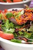 La ciotola di insalata fotografia stock