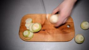 La cipolla del taglio su un taglio del piatto dai segmenti video d archivio