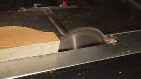 La circolare ha visto il legno di sawing in un'officina archivi video