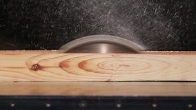 La circolare ha visto il taglio della plancia di legno stock footage