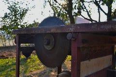 La circolare la lama per sega per legno in giardino Fotografia Stock Libera da Diritti