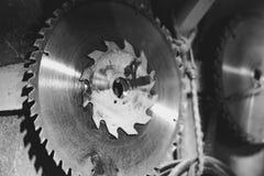 La circulaire a vu le disque image stock