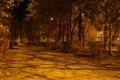 La circulation urbaine de nuit a brouillé des impostes de lumières d'automne d'arbres de route de phare de lumières allumant le f photographie stock