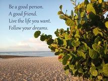 La citazione ispiratrice è una buona persona Un buon amico Viva la vita che volete Segua i vostri sogni Con la spiaggia sabbiosa  fotografie stock
