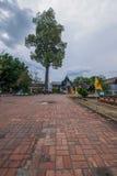 La città antica di Chiang Mai, stupa della conduttura della Tailandia Wat Chedi Luang Wat Chedi Luang Immagini Stock