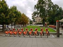 La città bikes per affitto il 10 agosto 2013 a Vilnius, Lituania. Immagine Stock
