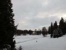 La città del parco della città di Pavlovsk Fotografie Stock