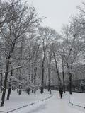 La città di inverno Immagini Stock