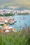 La città di Ocrida nel paesaggio urbano della Macedonia con lavanda fiorisce Fotografia Stock