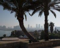 La città di Tel Aviv dal parco di Abrasha attraverso la baia in Giaffa fotografia stock libera da diritti