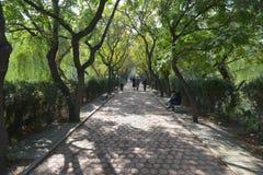 La città universitaria dell'università di Nankai Immagini Stock Libere da Diritti