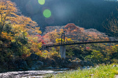 La ciudad de Mitake y el río de Tama en otoño sazonan Fotografía de archivo libre de regalías