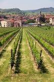 La ciudad italiana de Soave Foto de archivo