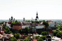 La ciudad vieja de Tallinn en el verano Fotos de archivo libres de regalías