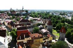 La ciudad vieja de Tallinn en el verano Fotos de archivo