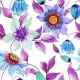 La clématite transparente fleurit sur les brindilles s'élevantes sur le fond blanc Configuration florale sans joint Peinture d'aq illustration libre de droits